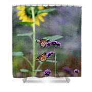 Two Monarch Butterflies And Sunflower 2011 Shower Curtain