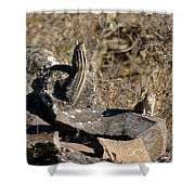 Two Munks On The Rocks Shower Curtain
