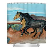 Two Mustangs Shower Curtain
