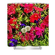 Two Of Dandelion. Floral Carpet. Shower Curtain