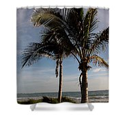 Two Palms And The Gulf Of Mexico Shower Curtain