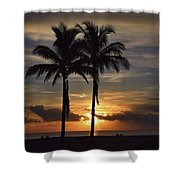 Two Palms At Dawn 18222 Shower Curtain