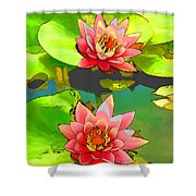 Two Pink Blooming Water Lilies  Shower Curtain