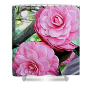Two Pink Camellias - Digital Art Shower Curtain