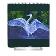 Two Point Landig Shower Curtain
