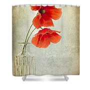 Two Poppies In A Glass Vase Shower Curtain