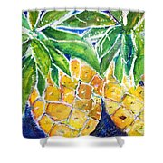 Two Purple Pineapples Shower Curtain