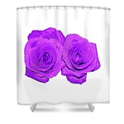 Two Roses Violet Purple And Enameled Effects Shower Curtain