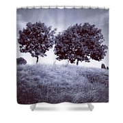 Two Rowans The Cloddies, Nuneaton Shower Curtain