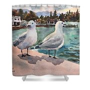 Two Seagulls By The Sea Shower Curtain