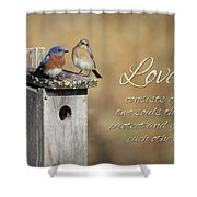 Two Souls Shower Curtain