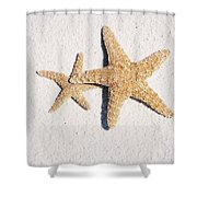 Two Starfish On The White Sand Shower Curtain
