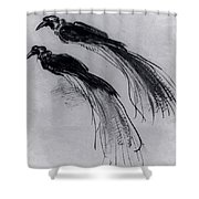 Two Studies Of A Bird Of Paradise 1630 Shower Curtain