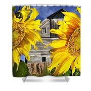 Two Sunflowers Shower Curtain