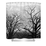 Two Trees Flatirons Boulder Colorado Shower Curtain