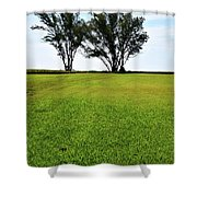 Two Trees On Meadow 15304 Shower Curtain