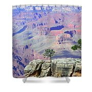 Two Tree Rock Shower Curtain