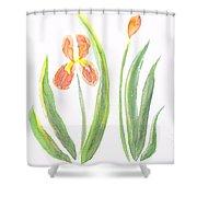 Two Iris II Watercolor Shower Curtain