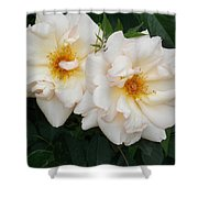 Two White Flowers Shower Curtain