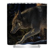 Twords The Sunrise Shower Curtain
