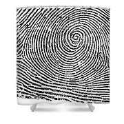 Typical Whorl Pattern In 1900 Shower Curtain