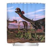 Tyrannosaurus Rex Attacking Shower Curtain