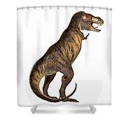 Tyrannosaurus Rex On White Shower Curtain