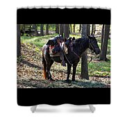 U. S. Cavalry Horse In Texas Shower Curtain