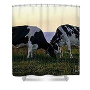 Udderly Delightful Shower Curtain