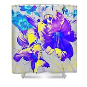 Ultraviolet Daylilies Shower Curtain