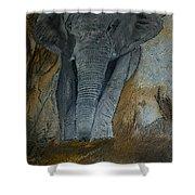 Un Elephant Ca Trompe Enormement Shower Curtain