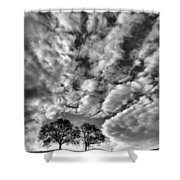 Under Cover In Black And White Shower Curtain