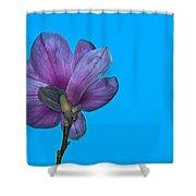 Under Magnolia Shower Curtain