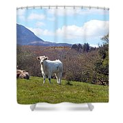 Under Muckish ,donegal  Shower Curtain