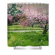 Under The Cherry Tree Shower Curtain