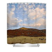 Under The Colorado Sky Shower Curtain