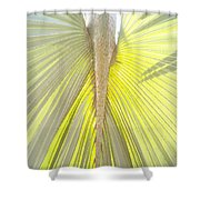 Under The Palm I Gp Shower Curtain