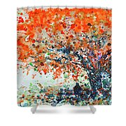 Under The Shade Of The Flamboyant Shower Curtain