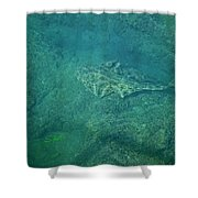 Under Water View Shower Curtain