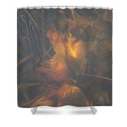 Under Waterlily Shower Curtain
