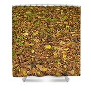 Undergrowth, Leaves Carpet. Shower Curtain