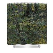 Undergrowth Saint Remy De Provence  July 1889 Vincent Van Gogh 1853  1890 Shower Curtain