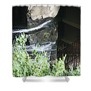 Underneath Fallingwater  Shower Curtain