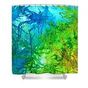 Undersea Corals Shower Curtain