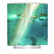 Underwater Background With Sunbeams Shower Curtain