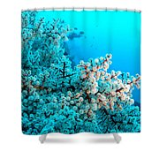 Underwater Cherry Blossom Shower Curtain
