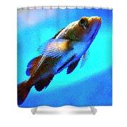 Underwater Levity Shower Curtain