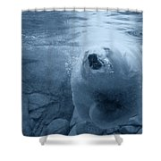 Underwater Playground Shower Curtain