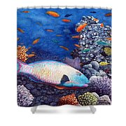 Underwater Treasures Shower Curtain