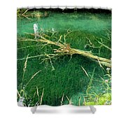 Underwater Tree Shower Curtain